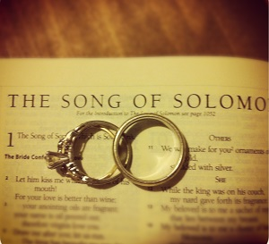 Song of solomon verses about love